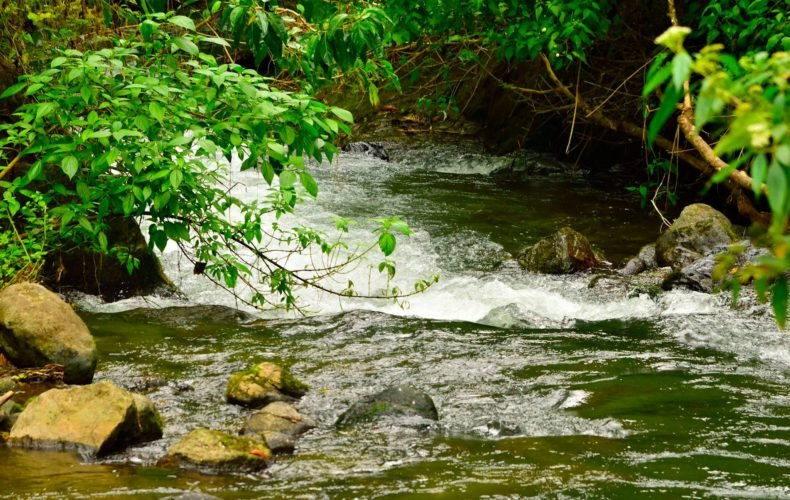 Costa Rica Nominates Savegre River as its Fourth Biosphere Reserve